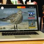 . Desktop web design – Pukorokoro Miranda Shorebird Centre
